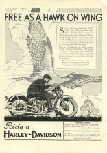 1931 Ad - Free as a Hawk on Wing